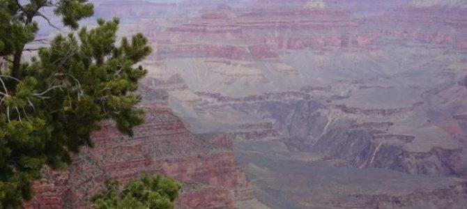 Grand Canyon: Der erneute Abbau von Uran ist eine unzumutbare Bedrohung