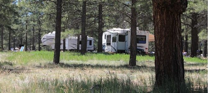 Grand Canyon: Kaibab Forest Camping